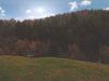 ++VERKAUFT++ 1-Zi.-Appartment im Schwarzwälder Luftkurort - Ausblick